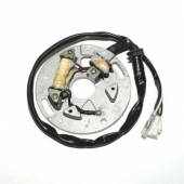 STATOR ELECTROSPORT 250 WR 1990-1997 stators regulateurs