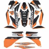 kit deco flu desings pro team  SX tout modeles  2011-2012 kit deco