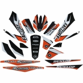 kit deco flu desings pro team SX tout modeles  2013 kit deco